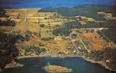 Orcas Island, River, Outdoor, Outdoors, Outdoor Games, The Great Outdoors, Rivers
