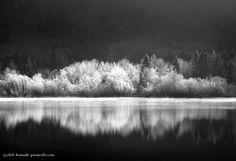 Late morning mist and reflection, Lake Bohinj, Slovenia