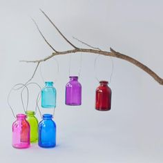 6 Miniature Hanging Bottles - Rainbow Shades