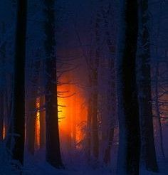 I love snowy winter nights.