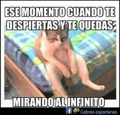 Megapost de las imàgenes màs graciosas (a mi gusto) Megapost of the funniest images (to my liking) Memes Humor, Frases Humor, Jokes, Funny Images, Funny Photos, Chat Facebook, Funny Spanish Memes, Spanish Sayings, Good Day Song