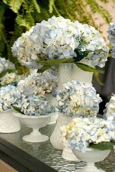 Pretty Hydrangeas by frankie