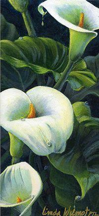 Linda Wilmot - Work Zoom: Calla Lilies