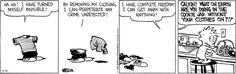 Calvin and Hobbes Comic Strip, August 26, 2016     on GoComics.com