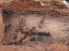Previously unknown Canaanite revolt against Egypt revealed in ancient Jaffa - Archaeology - Haaretz - Israel News | Haaretz.com