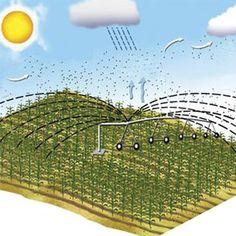 Todos los sistemas de riego que aplican con gran frecuencia el agua al cultivo mantienen unos niveles de humedad constantes y altos en el terreno, contribuyendo a unas tasas de transpiración (uso hídrico de los cultivos), más elevadas. Con ello, se obtienen mayores y mejores producciones.