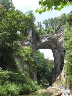 Natural Bridge, Virginia, an impressive sight, is geologically part of the Shenandoah Valley (Massanutten Synclinorium w/ Cambro-Ordovician limestones exposed at the surface), but it is in the James River watershed. Astonishingly, route 11 (the major along-strike route through the Shenandoah Valley prior to the construction of Interstate 81) runs over the top of Natural Bridge, using it as an actual bridge.