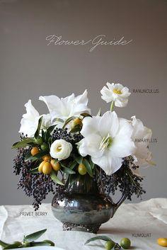 hello beautiful amaryllis