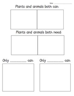 Teacher Laura: Comparing and Contrasting Plants and Animals