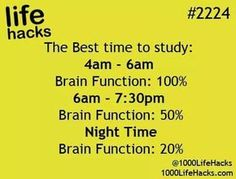 Brain Activity Best at These Times of Day!