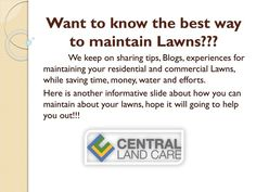 South Tampa Lawn Maintenance & Landscaping for your property