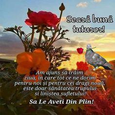 Good Morning Greetings, Plants, Plant, Planets