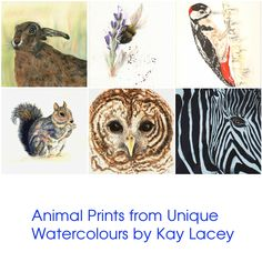 Animal Print Featuring Unique Original Artwork. Ideal gift for Nature, Animal, Hare, Bee, Squirrel, Woodpecker, Zebra or Owl Lover by KayLaceyWatercolours on Etsy https://www.etsy.com/listing/551874776/animal-print-featuring-unique-original