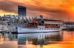Nhật kí Montréal - San Diego | Tin Tức - Sức Khỏe - Gia Đình