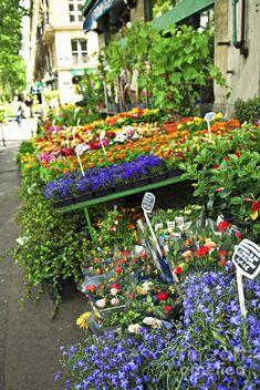 Flower Stand In Paris.