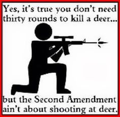 #secondamendment#defensefromtyrannicalgovernment