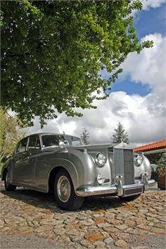 Wedding Transport - Joel Calheiros shuttershock.com
