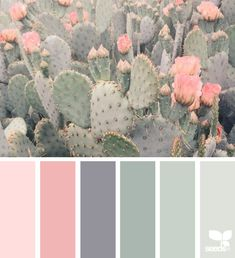Color palettes for floral surface pattern design. Pink, peach fantasy flowers #colorpalettes #colors