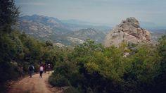 Sardinia landscape: Oggi in #escursione sul #monte #limbara ( Limbara mountain) #montagna #mountain #treking #trekking #hiking #outdoorliving #outdoor #outdoors #nature #natura #neve #snow #sardegna #sardinien #cerdeña #sardaigne #sardegnageographic #explore #sardiniaexperience #exploring #sardegnacountry #landscape #sardiniamylove #sardinialandscape #sardinia_super_pics #esplora #igw_skyline - via http://ift.tt/1zN1qff e #traveloffers #holiday | offerte di turismo in Sardegna…