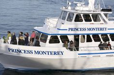 Whale Watching on #Monterey Bay. #InspiredMeetings #WhyHB