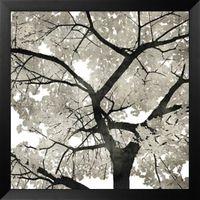 Silver Leaves by Kate Bennett Framed Art #westframes