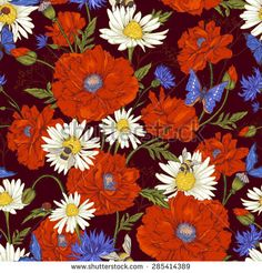 Summer Vintage Floral Seamless Pattern with Blooming Red Poppies Chamomile Ladybird and Daisies Cornflowers Bumblebee  Bee and Blue Butterflies. Vector Illustration on Dark Brown Background