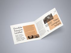 Free Double Square Leaflet Mockup by MockupsDesign