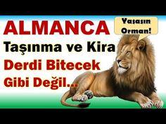 ALMANCA - TAŞINMA VE KİRA İLE ALAKALI Gunluk Konuşma İncelikleri! Lion, Animals, Leo, Animales, Animaux, Lions, Animal, Animais