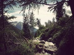 A break in the trees photography sky outdoors nature trees mountains