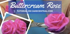 Chef Alan Tetreault of Global Sugar Art shows you step by step how easy it can be to make beautiful buttercream roses on a bud and on a...