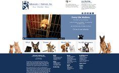 Website Design for Advocates 4 Animals, Inc. (www.advocates4animals.com). Designed by BR Graphic Design LLC (www.brgdonline.com)