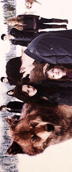 Log in Twilight Saga Twilight Film, Twilight Saga Quotes, Twilight Renesmee, Vampire Twilight, Twilight Saga Series, Twilight Edward, Twilight Cast, Twilight Breaking Dawn, Twilight New Moon