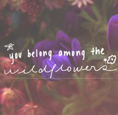You belong among the wildflowers :]