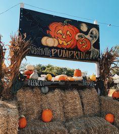 Halloween Inspo, Halloween Pictures, Halloween Pumpkins, Fall Halloween, Halloween Party, Fall Wallpaper, Halloween Wallpaper, Holiday Fun, Festive