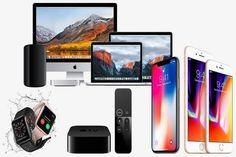 Apple Ürün Çeşitleri Ve Kullanım Amaçları - canaksu.org