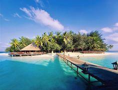 Holiday Island Resort #bmrtg #Maldives #holidayislandresort #bestvacations #WorldTravelGuide #LalumiTravels #warrenjc #livetravelchannel #sunnysideoflife #maldivity #travel #traveling #vacation #dive #surfing #adventureculture #instagood #holiday #lagoon