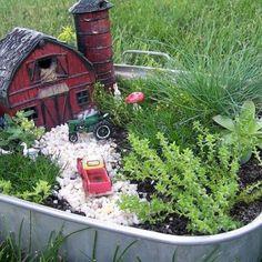 Farm Fairy Gardens
