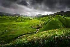 Dzukou valley, Nagaland.