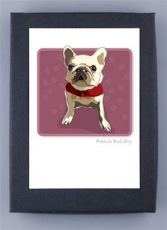 French Bulldog Boxed Note Cards
