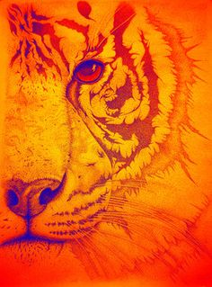 "Saatchi Online Artist Mayhem Mediums; Digital, ""Sunburst tiger"" #art"