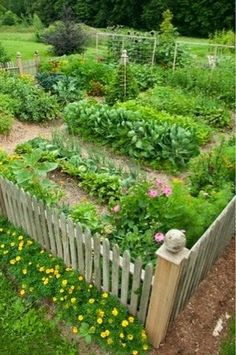 4 Thrilling Tips AND Tricks: Vegetable Garden Fence How To Build urban vegetable garden homestead survival.Starting A Vegetable Garden Products home vegetable garden kitchens.When To Plant Vegetable Garden In The South. Potager Garden, Veg Garden, Garden Cottage, Edible Garden, Garden Landscaping, Vegetable Gardening, Landscaping Ideas, Garden Beds, Garden Paths