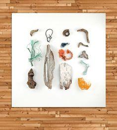 The Bluffs, Bar Harbor I Beachcombing Photo Art Print   Art Photography   Quercus Design