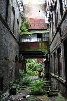 After fifteen years, plants have decided that they're in charge of buildings old building background dark Abandoned Mansions, Abandoned Buildings, Abandoned Places, Abandoned Castles, Haunted Places, Apocalypse Aesthetic, Apocalypse Art, Story Setting, End Of The World