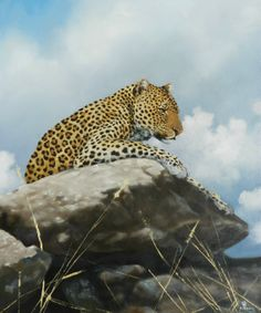 Leopard's Rock Acrylic on stretched Canvas. EUR 520.00. Art by Robert Teeling