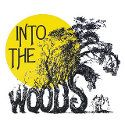 """How """"Into the Woods"""" Reveals the Power of Revision : Word Count : Thinkmap Visual Thesaurus"""