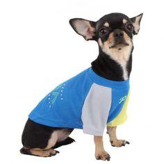 Moldes para hacer ropa para perros prácticos y económicos Pet Dogs, Pets, Cuba, Chihuahua, French Bulldog, Crafts, Ideas Geniales, Unicorn, Glitter