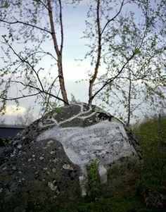 Druids Trees: Rock art, Finland.