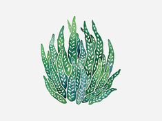 These hand-painted illustrations were created in 2010 as a personal exploration. Watercolor Sea, Watercolor Plants, Watercolor Paintings, Herbs Illustration, Watercolor Illustration, Sea Flowers, Sea Plants, Plant Drawing, Plant Art