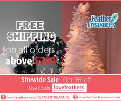 Special offer from Feather Treasures on Christmas! Visit us: http://www.feathertreasures.com/