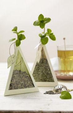 Mitbringsel: Teepyramiden